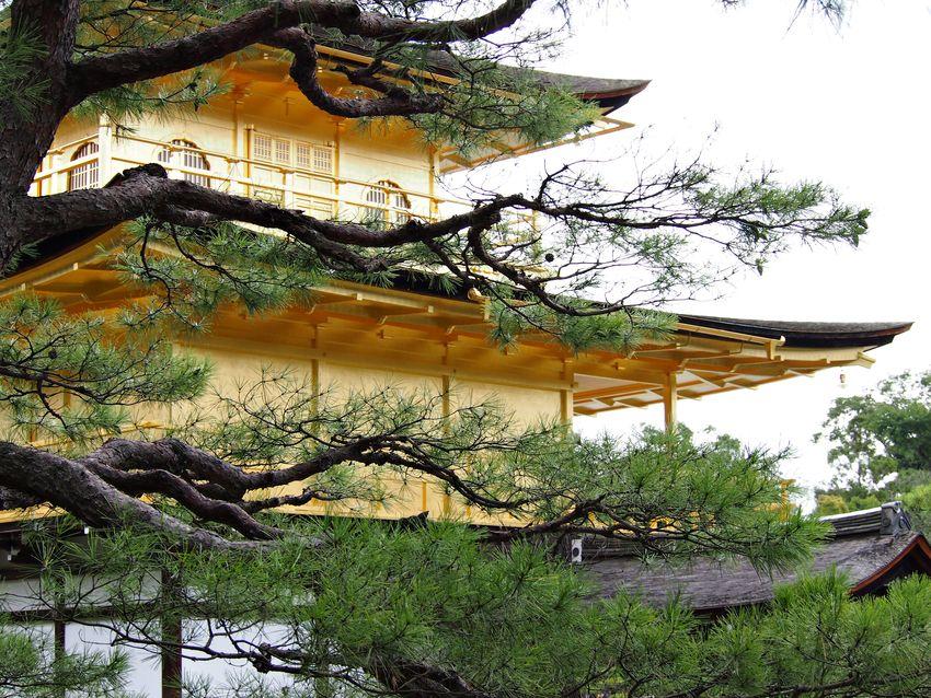 Kyoto golden pavilion kinkaku-ji