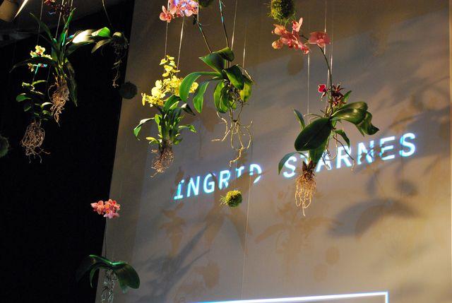 NZFW: Ingrid Starnes AW11/12