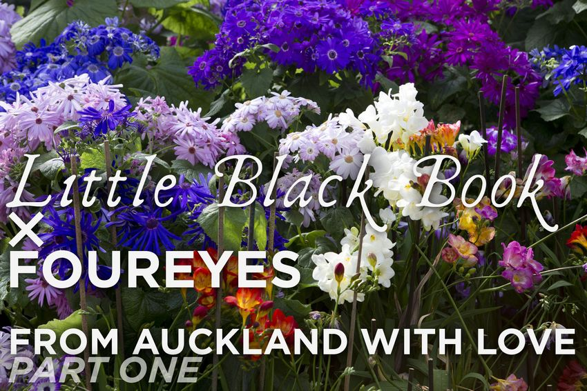 From Auckland With Love: Part 1 – Rhinestone